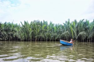 סירות Coconut בוויאטנם