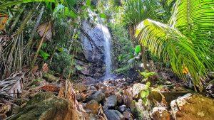 המפל הנסתר של פרלין - Praslin Waterfall