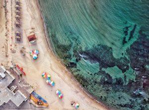 הצבעוני- חוף הילטון